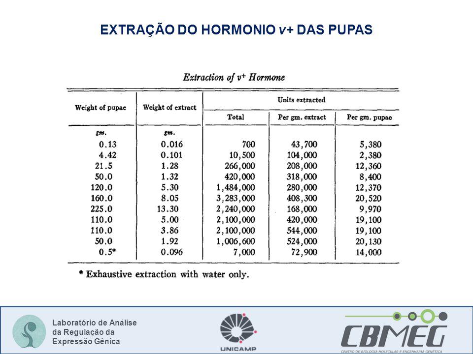 Laboratório de Análise da Regulação da Expressão Gênica EXTRAÇÃO DO HORMONIO v+ DAS PUPAS