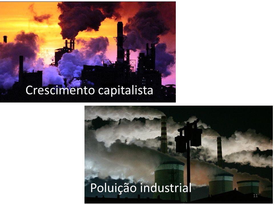 11 Poluição industrial Crescimento capitalista