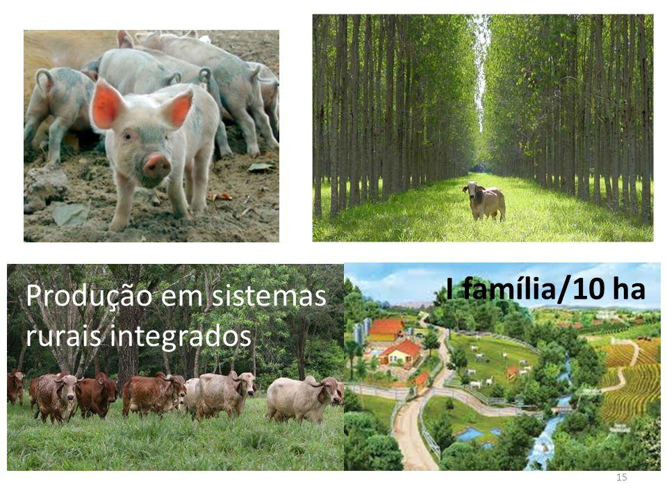 15 Produção em sistemas rurais integrados I família/10 ha