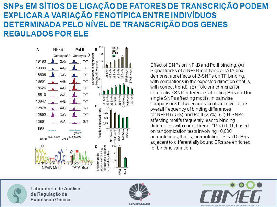 Laboratório de Análise da Regulação da Expressão Gênica Effect of SNPs on NFkB and PolII binding. (A) Signal tracks of a NFkB motif and a TATA box dem