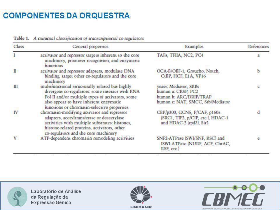 Laboratório de Análise da Regulação da Expressão Gênica COMPONENTES DA ORQUESTRA