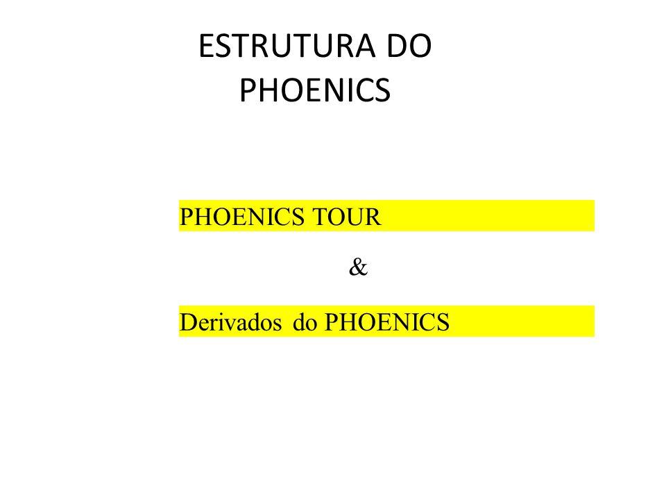 ESTRUTURA DO PHOENICS PHOENICS TOUR Derivados do PHOENICS &