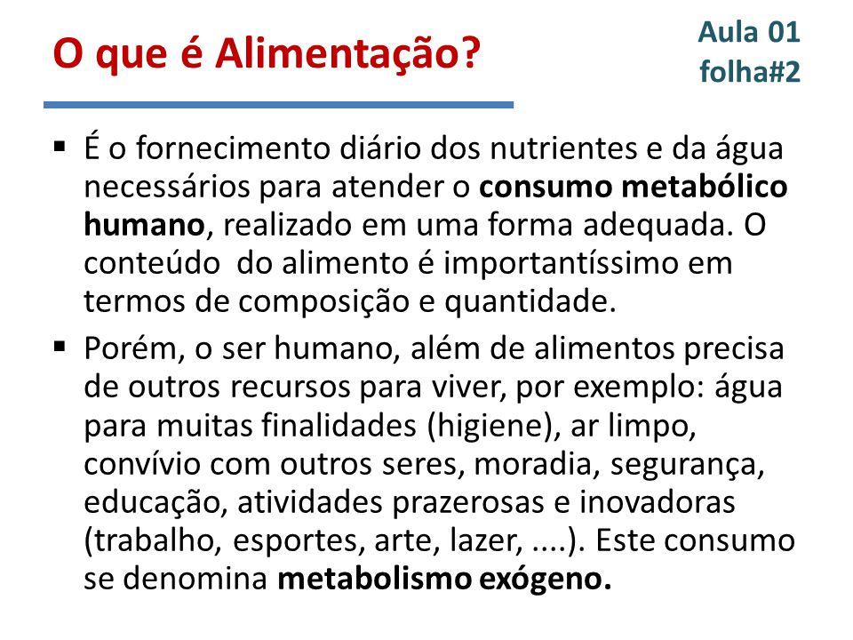 Aula 01 folha#2 É o fornecimento diário dos nutrientes e da água necessários para atender o consumo metabólico humano, realizado em uma forma adequada.