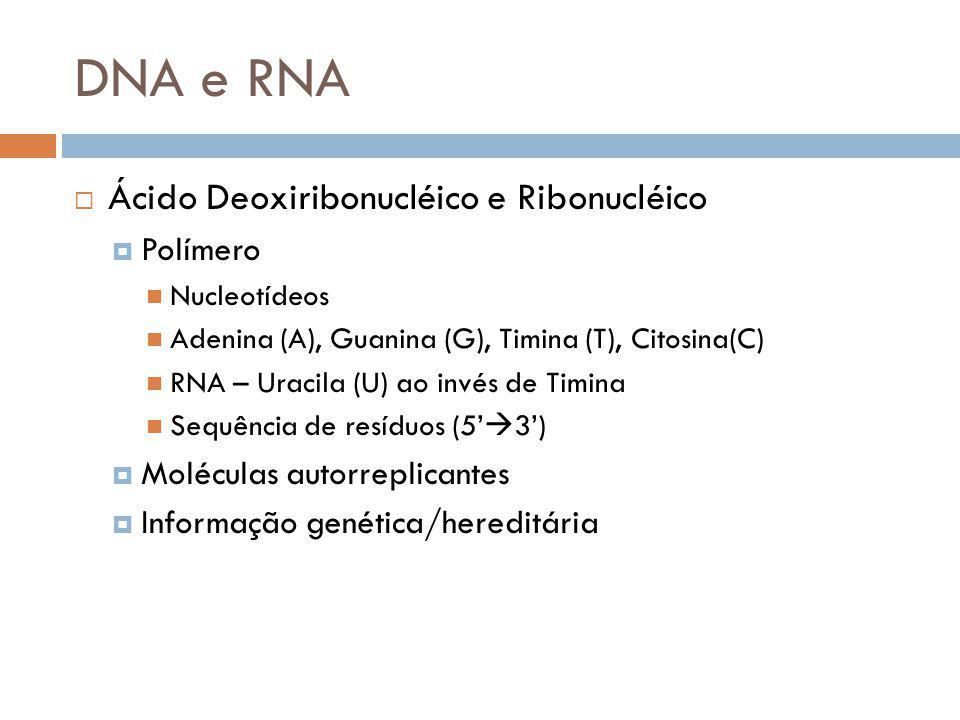 DNA e RNA Ácido Deoxiribonucléico e Ribonucléico Polímero Nucleotídeos Adenina (A), Guanina (G), Timina (T), Citosina(C) RNA – Uracila (U) ao invés de