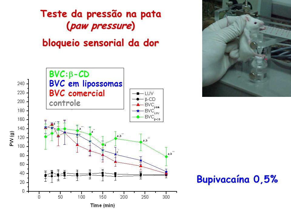 Teste da pressão na pata (paw pressure) bloqueio sensorial da dor BVC: -CD BVC em lipossomas BVC comercial controle Bupivacaína 0,5%