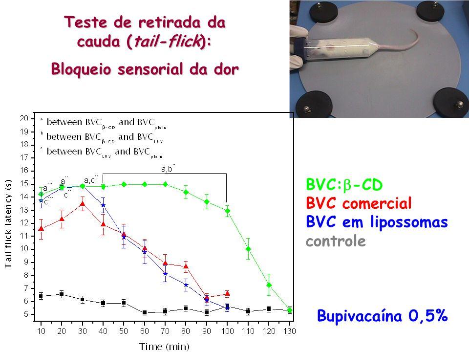 Teste de retirada da cauda (tail-flick): Bloqueio sensorial da dor BVC: -CD BVC comercial BVC em lipossomas controle Bupivacaína 0,5%
