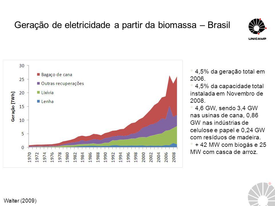 Geração de eletricidade a partir da biomassa – Brasil 4,5% da geração total em 2006. 4,5% da capacidade total instalada em Novembro de 2008. 4,6 GW, s