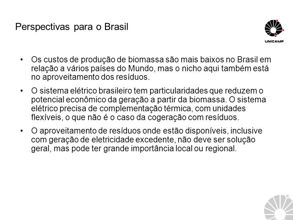 Perspectivas para o Brasil Os custos de produção de biomassa são mais baixos no Brasil em relação a vários países do Mundo, mas o nicho aqui também es