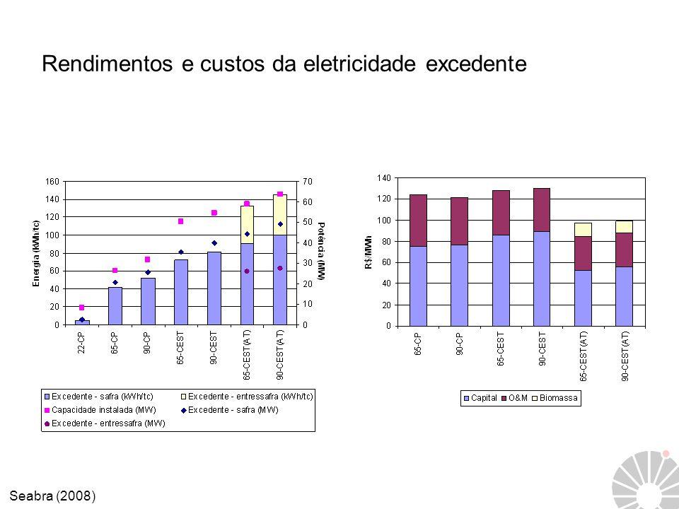 Rendimentos e custos da eletricidade excedente Seabra (2008)