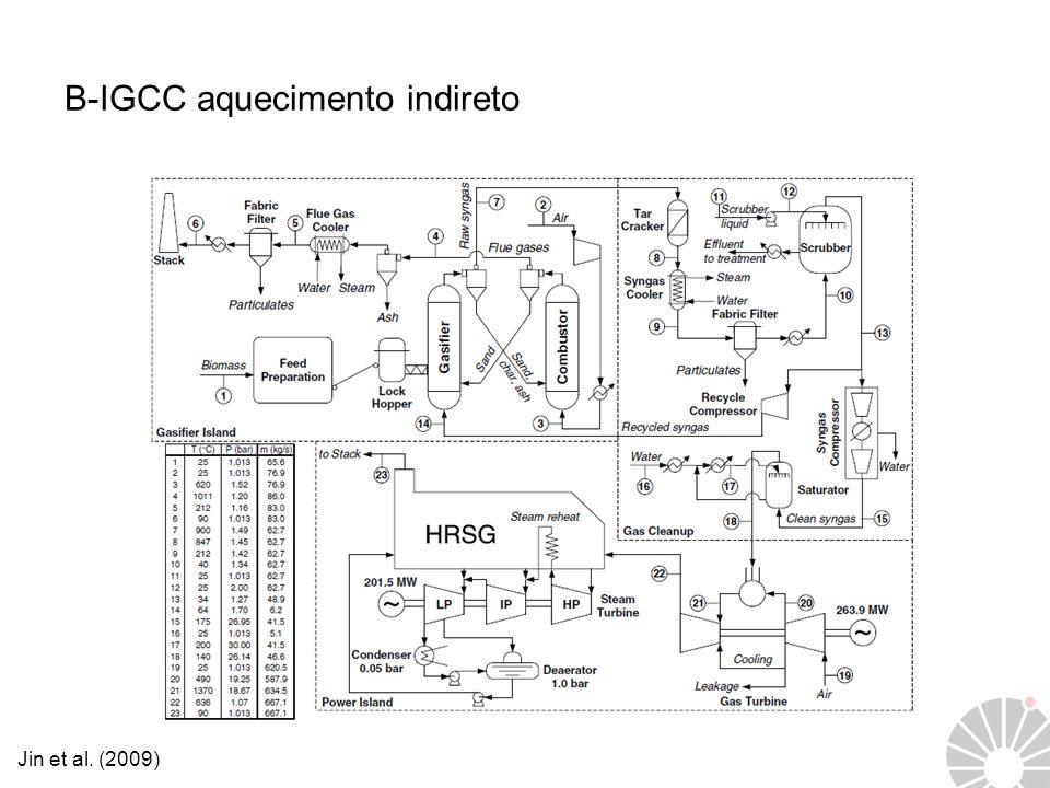 B-IGCC aquecimento indireto Jin et al. (2009)
