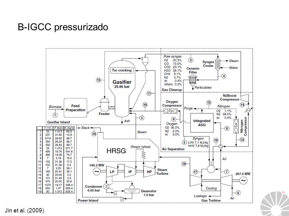 B-IGCC pressurizado Jin et al. (2009)