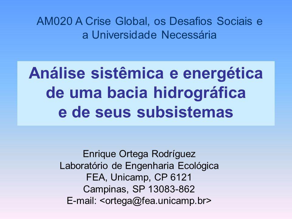 A figura seguinte prevê o comportamento energético dos sistemas de aqüicultura ao se intensificar a intervenção humana.