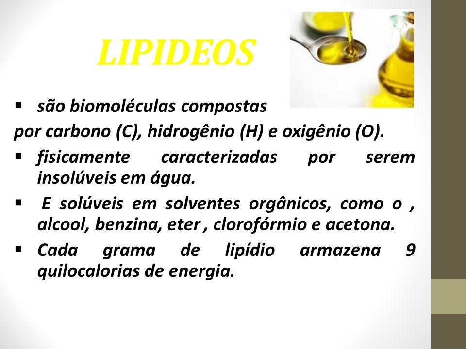 LIPIDEOS  são biomoléculas compostas por carbono (C), hidrogênio (H) e oxigênio (O).