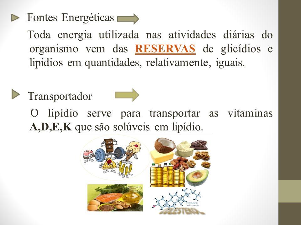 Fontes Energéticas Toda energia utilizada nas atividades diárias do organismo vem das RESERVAS de glicídios e lipídios em quantidades, relativamente, iguais.RESERVAS Transportador O lipídio serve para transportar as vitaminas A,D,E,K que são solúveis em lipídio.