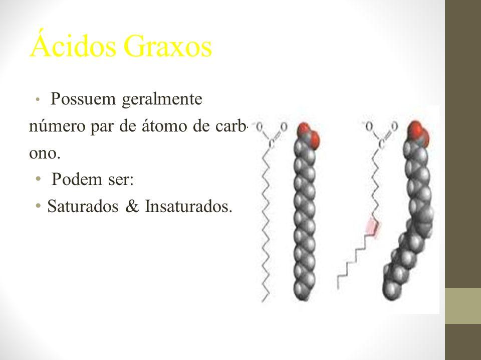 Ácidos Graxos Possuem geralmente número par de átomo de carb- ono.