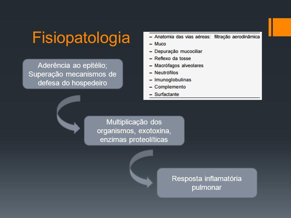 Fisiopatologia Aderência ao epitélio; Superação mecanismos de defesa do hospedeiro Multiplicação dos organismos, exotoxina, enzimas proteolíticas Resposta inflamatória pulmonar