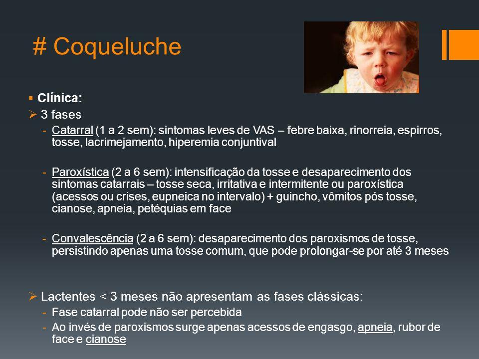 # Coqueluche  Clínica:  3 fases -Catarral (1 a 2 sem): sintomas leves de VAS – febre baixa, rinorreia, espirros, tosse, lacrimejamento, hiperemia conjuntival -Paroxística (2 a 6 sem): intensificação da tosse e desaparecimento dos sintomas catarrais – tosse seca, irritativa e intermitente ou paroxística (acessos ou crises, eupneica no intervalo) + guincho, vômitos pós tosse, cianose, apneia, petéquias em face -Convalescência (2 a 6 sem): desaparecimento dos paroxismos de tosse, persistindo apenas uma tosse comum, que pode prolongar-se por até 3 meses  Lactentes < 3 meses não apresentam as fases clássicas: -Fase catarral pode não ser percebida -Ao invés de paroxismos surge apenas acessos de engasgo, apneia, rubor de face e cianose