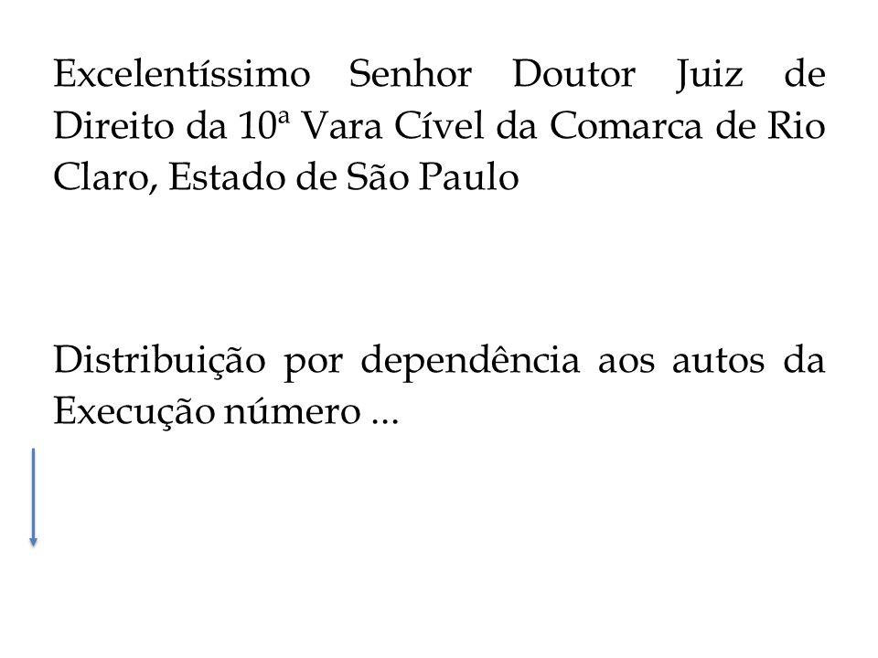 Excelentíssimo Senhor Doutor Juiz de Direito da 10ª Vara Cível da Comarca de Rio Claro, Estado de São Paulo Distribuição por dependência aos autos da Execução número...