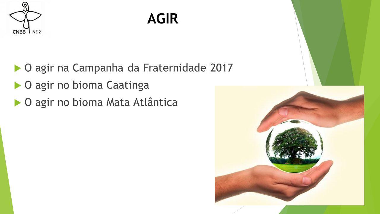 AGIR  O agir na Campanha da Fraternidade 2017  O agir no bioma Caatinga  O agir no bioma Mata Atlântica