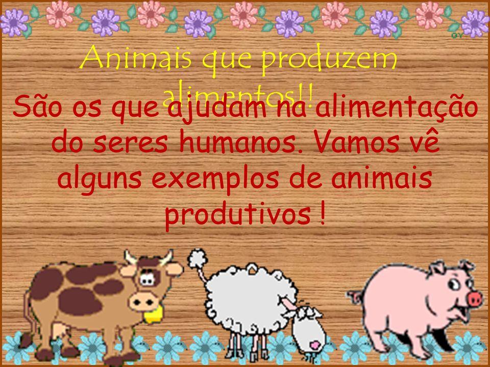 Animais que produzem alimentos!. São os que ajudam na alimentação do seres humanos.