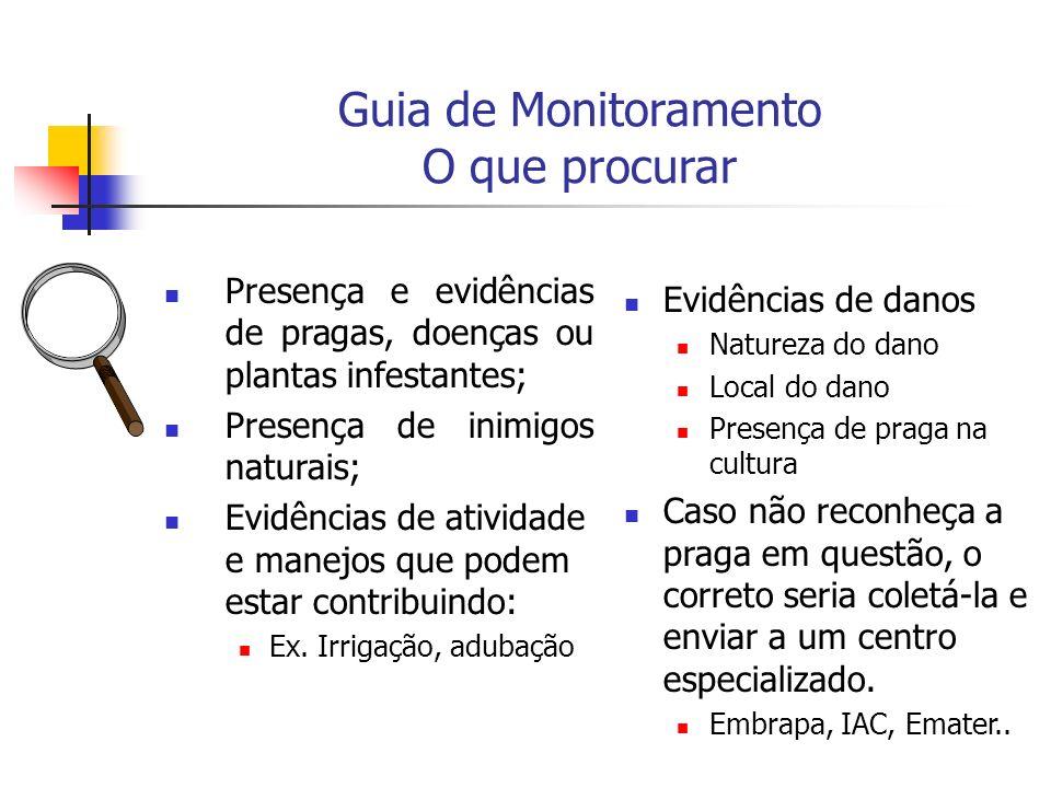 Guia de Monitoramento O que procurar Presença e evidências de pragas, doenças ou plantas infestantes; Presença de inimigos naturais; Evidências de atividade e manejos que podem estar contribuindo: Ex.