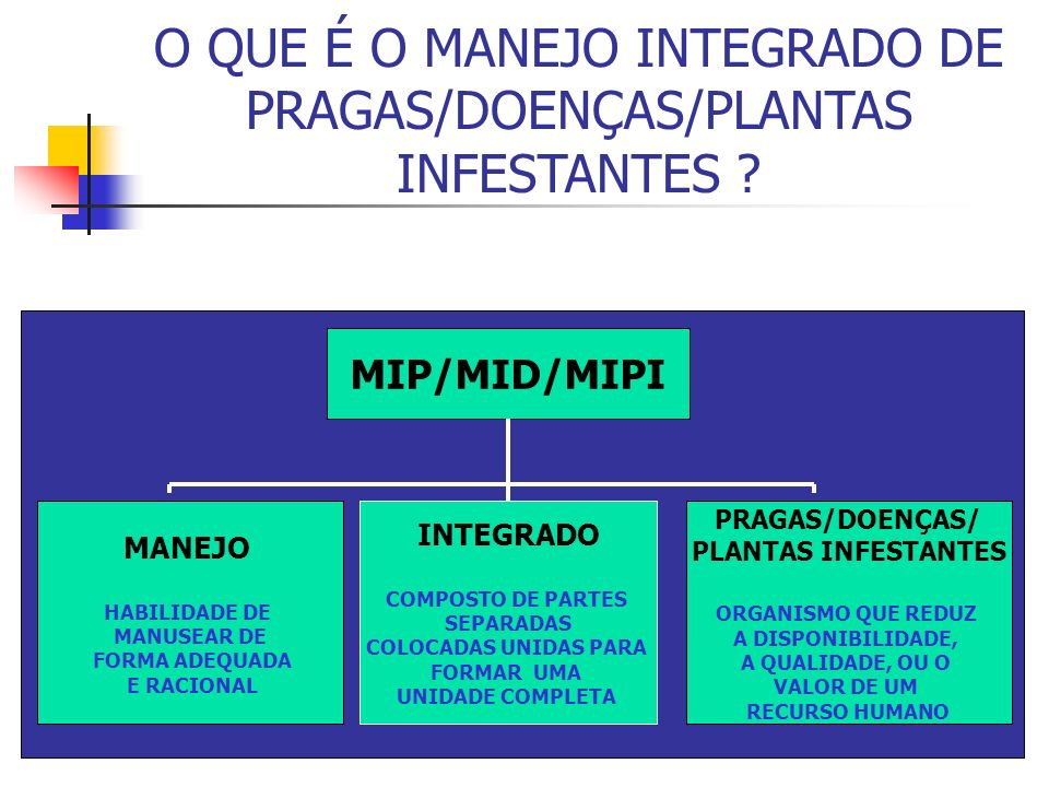 O QUE É O MANEJO INTEGRADO DE PRAGAS/DOENÇAS/PLANTAS INFESTANTES .