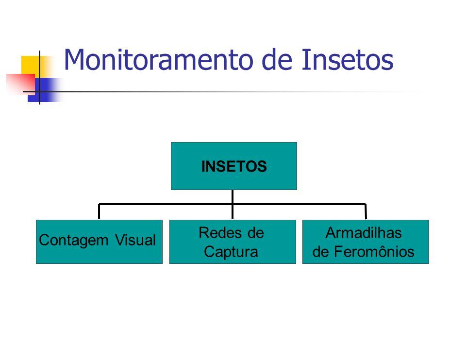 Monitoramento de Insetos Contagem Visual Redes de Captura Armadilhas de Feromônios InsetosINSETOS