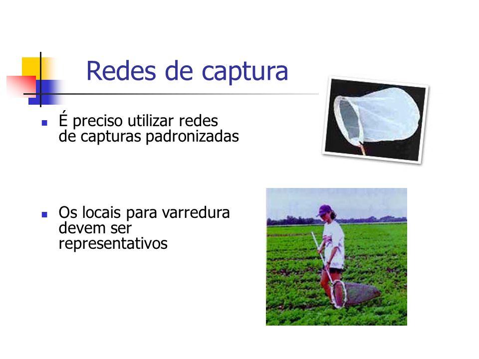Redes de captura É preciso utilizar redes de capturas padronizadas Os locais para varredura devem ser representativos