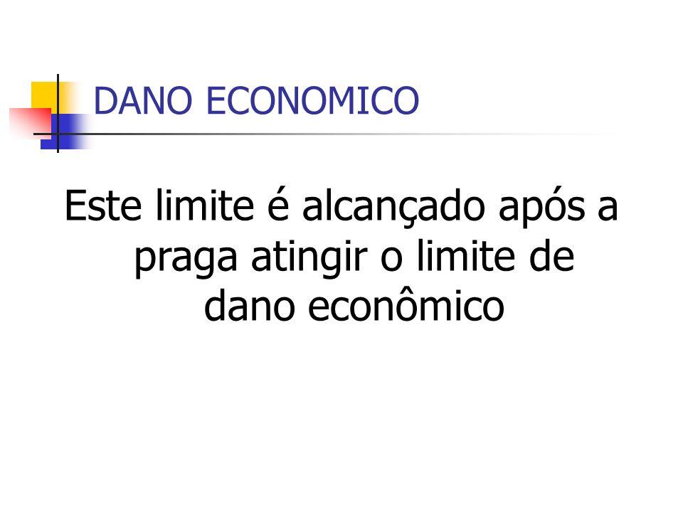 DANO ECONOMICO Este limite é alcançado após a praga atingir o limite de dano econômico