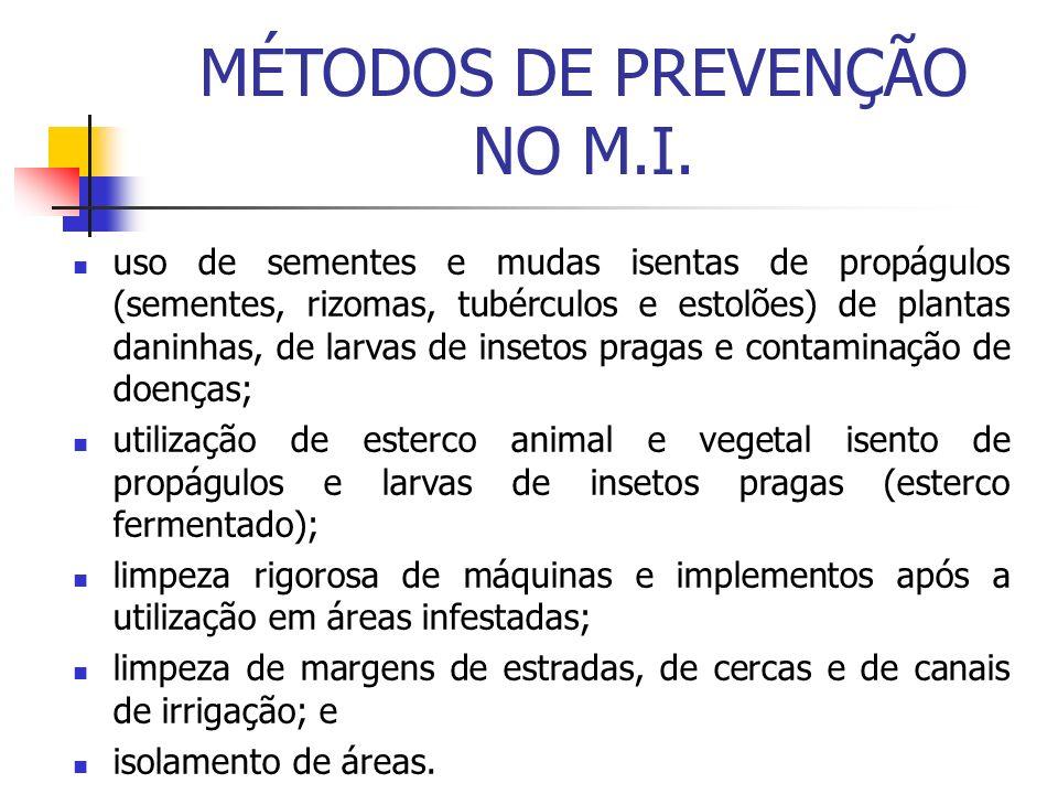 MÉTODOS DE PREVENÇÃO NO M.I.