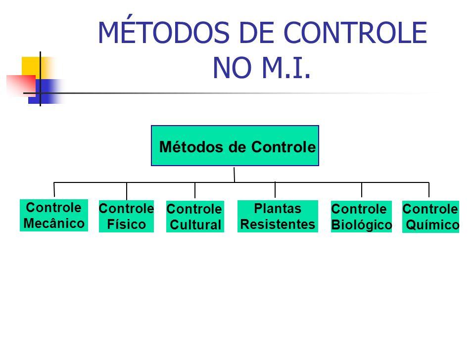 MÉTODOS DE CONTROLE NO M.I.