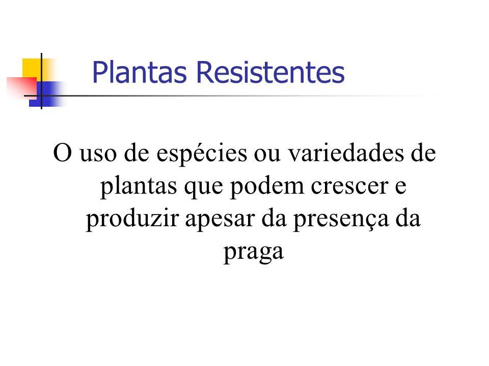 Plantas Resistentes O uso de espécies ou variedades de plantas que podem crescer e produzir apesar da presença da praga