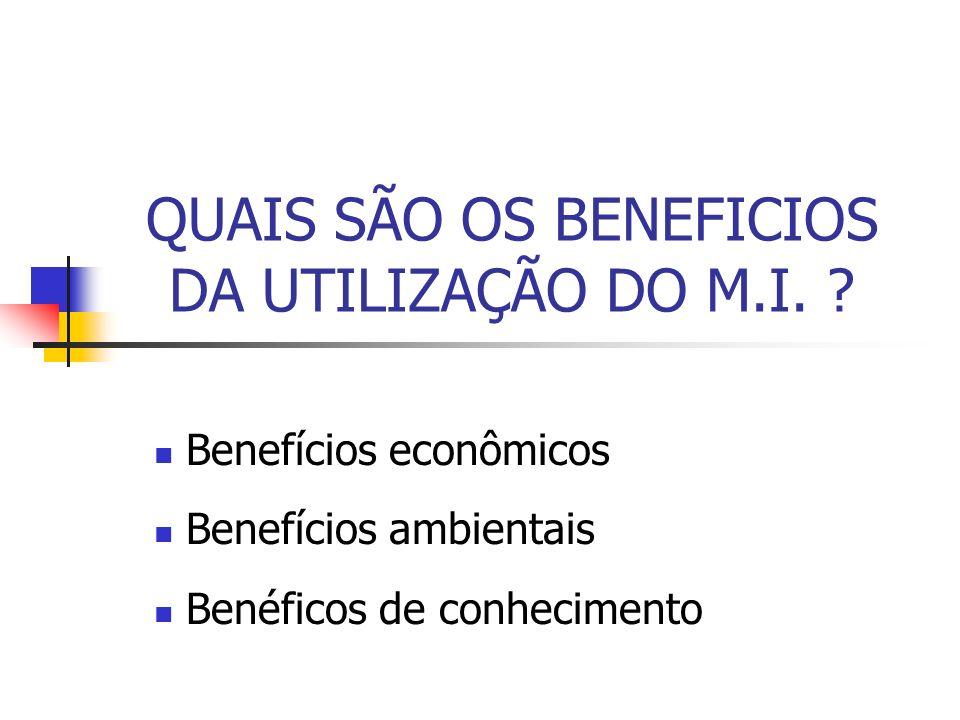 QUAIS SÃO OS BENEFICIOS DA UTILIZAÇÃO DO M.I.