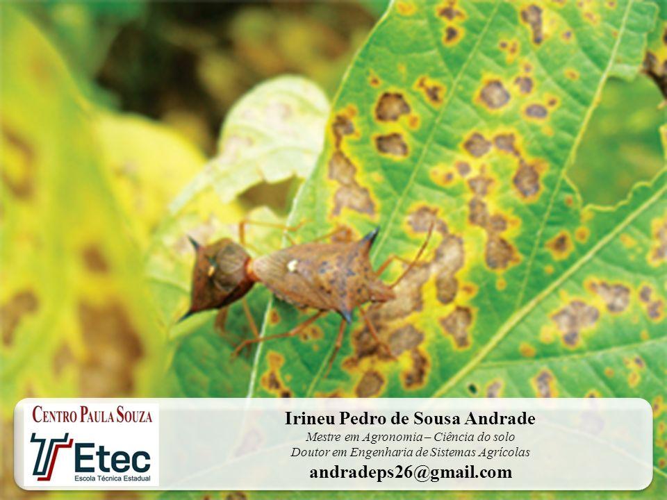Irineu Pedro de Sousa Andrade Mestre em Agronomia – Ciência do solo Doutor em Engenharia de Sistemas Agrícolas andradeps26@gmail.com