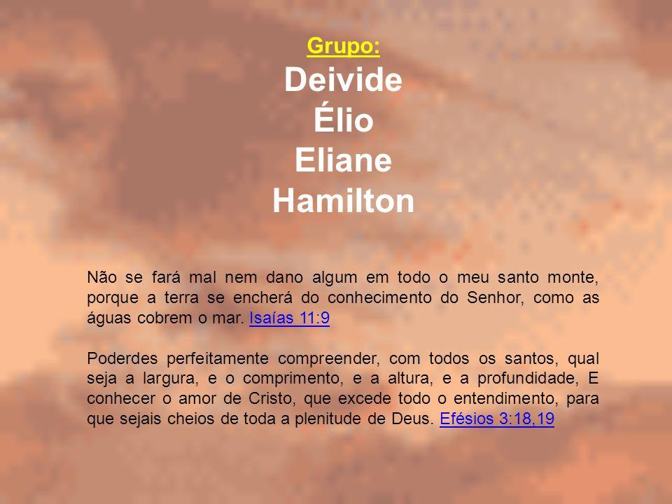 Grupo: Deivide Élio Eliane Hamilton Não se fará mal nem dano algum em todo o meu santo monte, porque a terra se encherá do conhecimento do Senhor, com