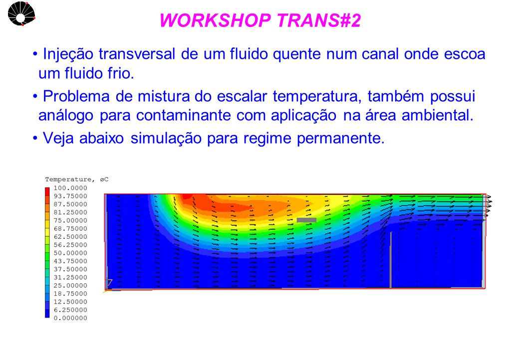 UNICAMP WORKSHOP TRANS#2 Injeção transversal de um fluido quente num canal onde escoa um fluido frio.