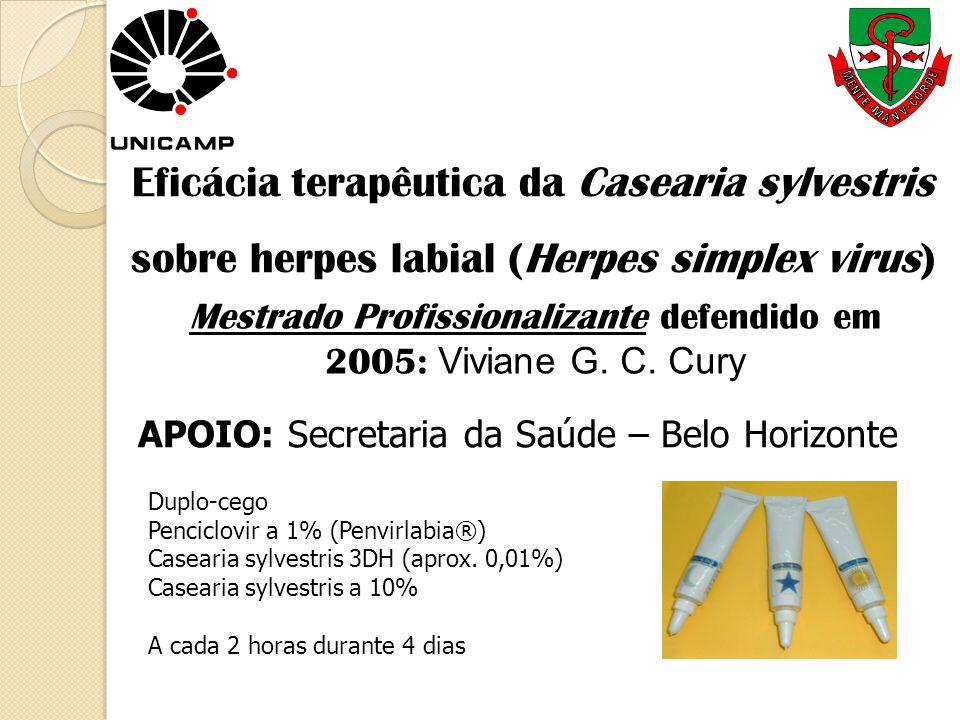 Eficácia terapêutica da Casearia sylvestris sobre herpes labial (Herpes simplex virus) Mestrado Profissionalizante defendido em 2005: Viviane G. C. Cu