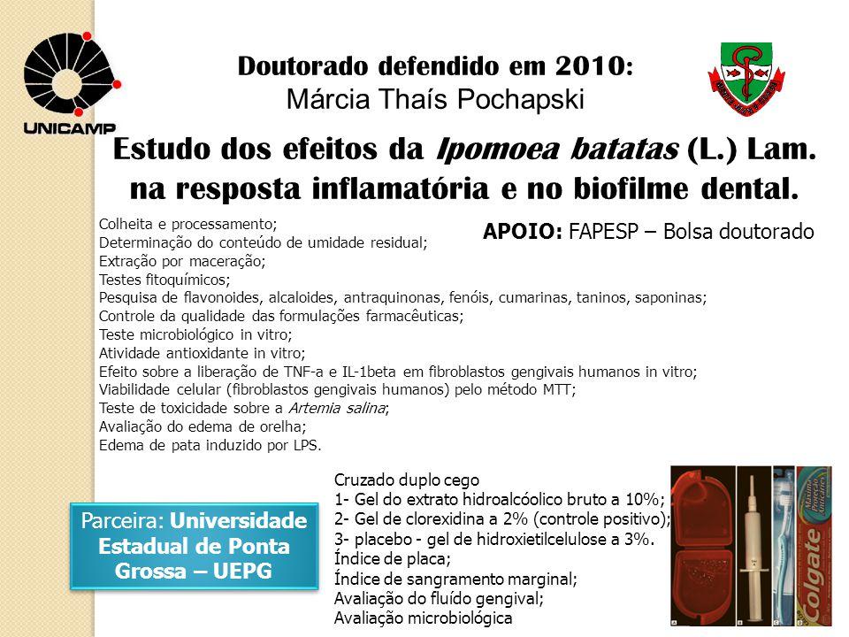 Estudo dos efeitos da Ipomoea batatas (L.) Lam. na resposta inflamatória e no biofilme dental. Doutorado defendido em 2010: Márcia Thaís Pochapski Cru