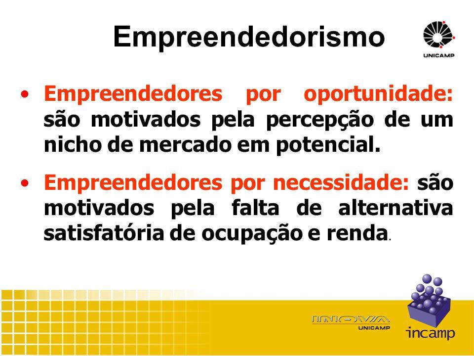 Empreendedorismo Empreendedores por oportunidade: são motivados pela percepção de um nicho de mercado em potencial.