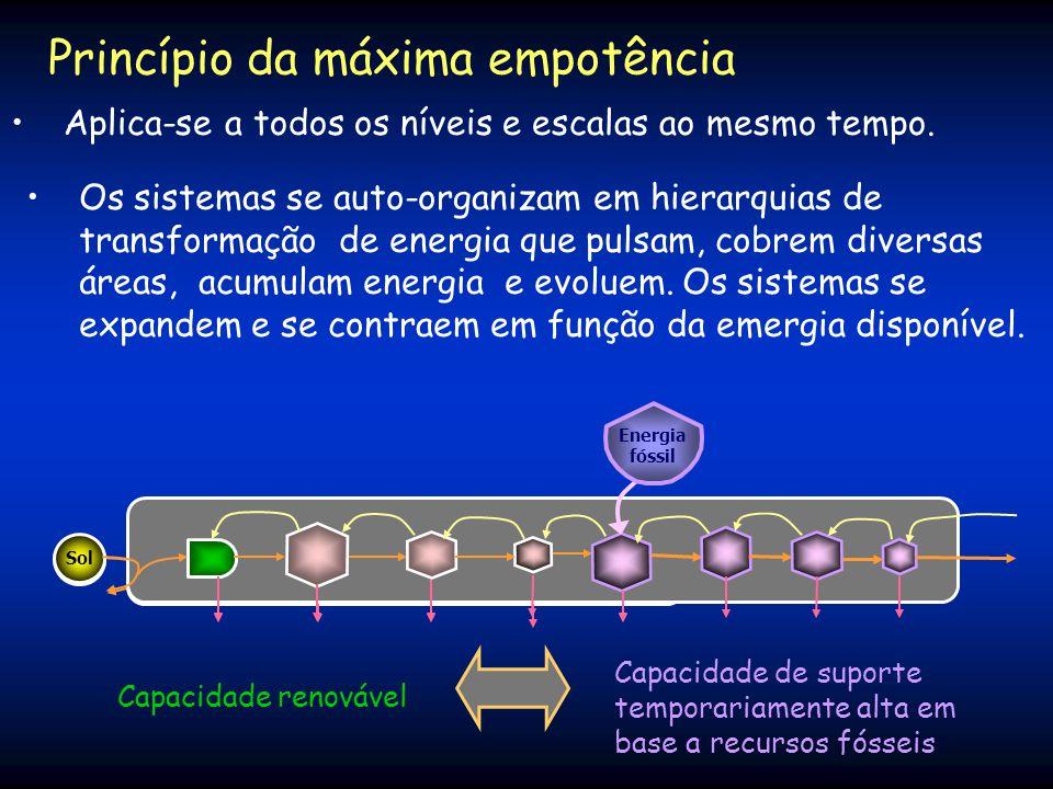 Princípio da máxima empotência A potência ecossistêmica (emergia/tempo) denomina-se empotência. O principio da máxima empotência diz: Os sistemas tend