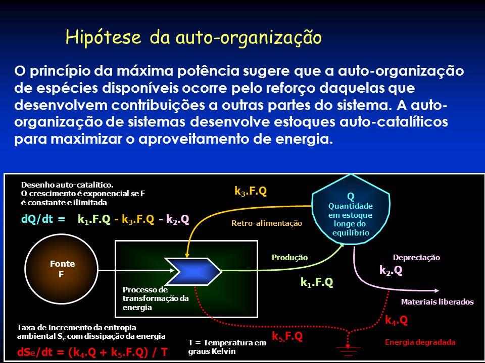 Hipótese da auto-organização O princípio da máxima potência sugere que a auto-organização das espécies ocorre pelo reforço daquelas que desenvolvem co