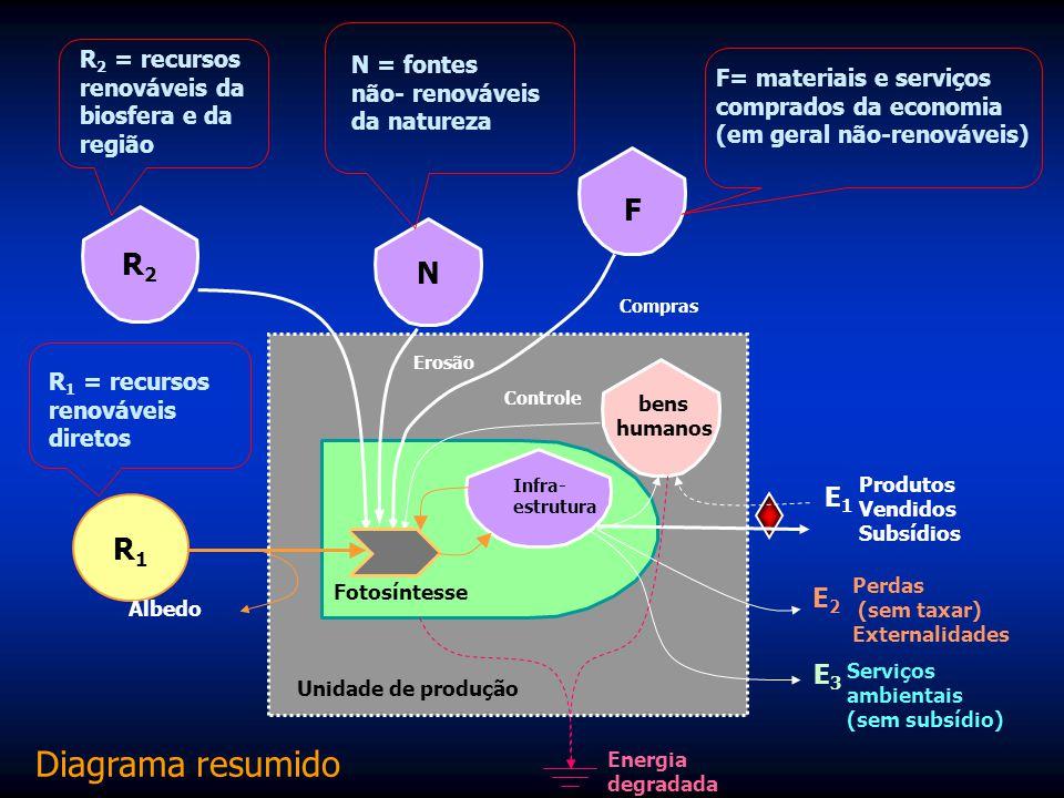 Princípio da máxima empotência A potência ecossistêmica (emergia/tempo) denomina-se empotência. O principio da máxima empotência disse: Os sistemas te