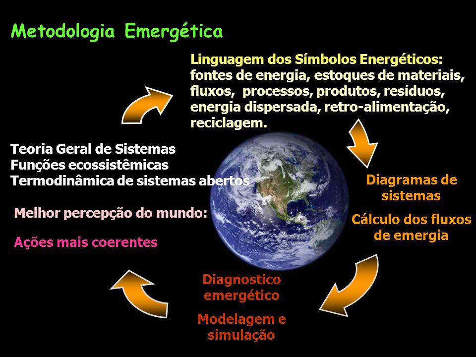 Introdução à Metodologia Emergética. Fevereiro 2005 Enrique Ortega Departamento de Engenharia de Alimentos Laboratório de Engenharia Ecológica e Infor