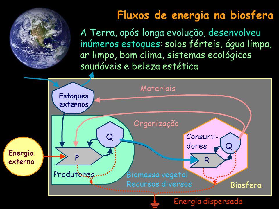 Fluxos de energia e materiais em um sistema Sumidouro de Energia Fonte de energia externa Interação Deposito interno Produtor Consumidor Deposito exte