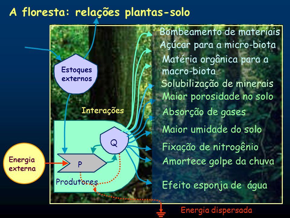 A Terra, após longa evolução, desenvolveu inúmeros estoques: solos férteis, água limpa, ar limpo, bom clima, sistemas ecológicos saudáveis e beleza es