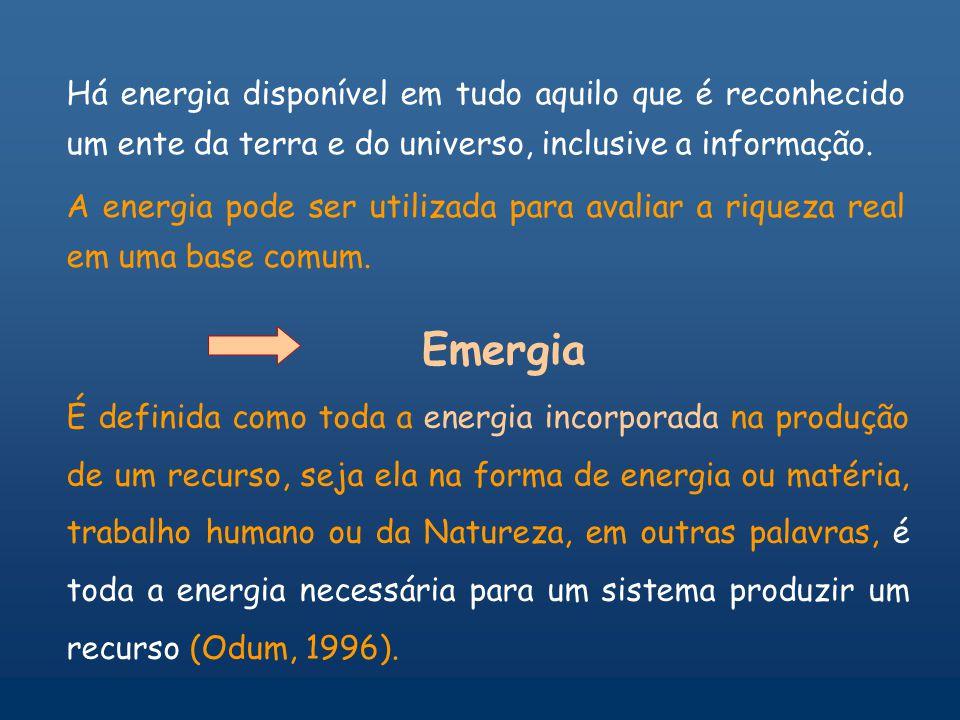 Produtos e serviços ambientais Biomassa Biodiversidade A floresta Diminui a temperatura P Q Energia externa Energia dispersada Estoques externos Produ
