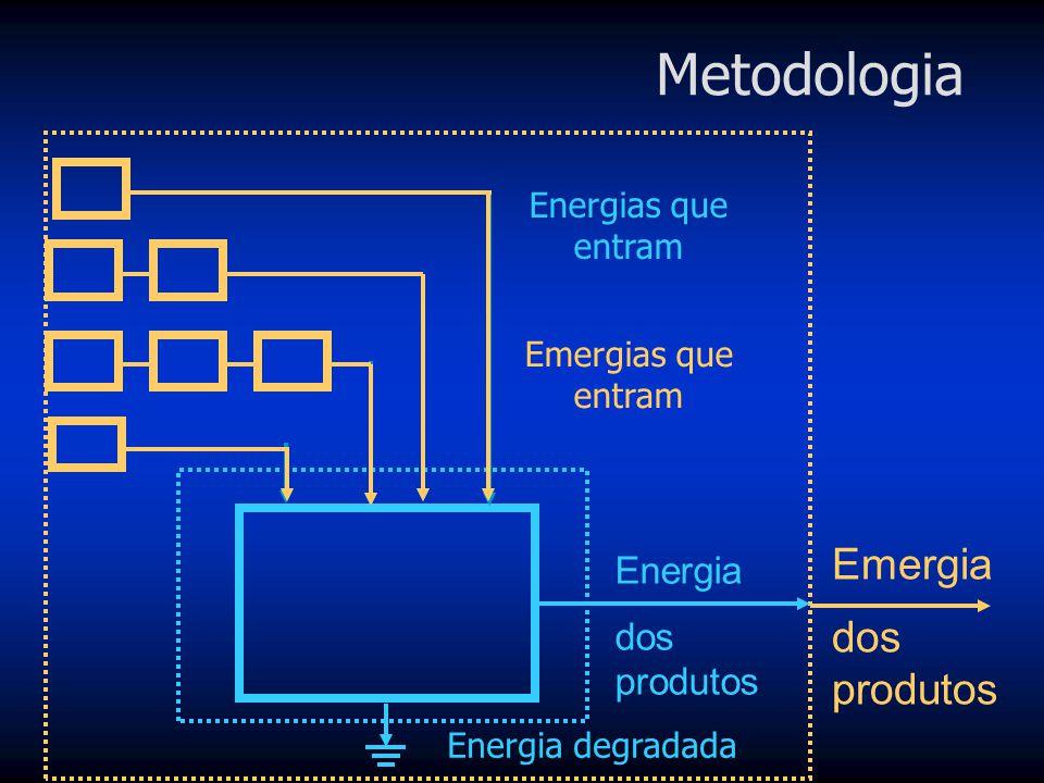 É definida como toda a energia incorporada na produção de um recurso, seja ela na forma de energia ou matéria, trabalho humano ou da Natureza, em outr