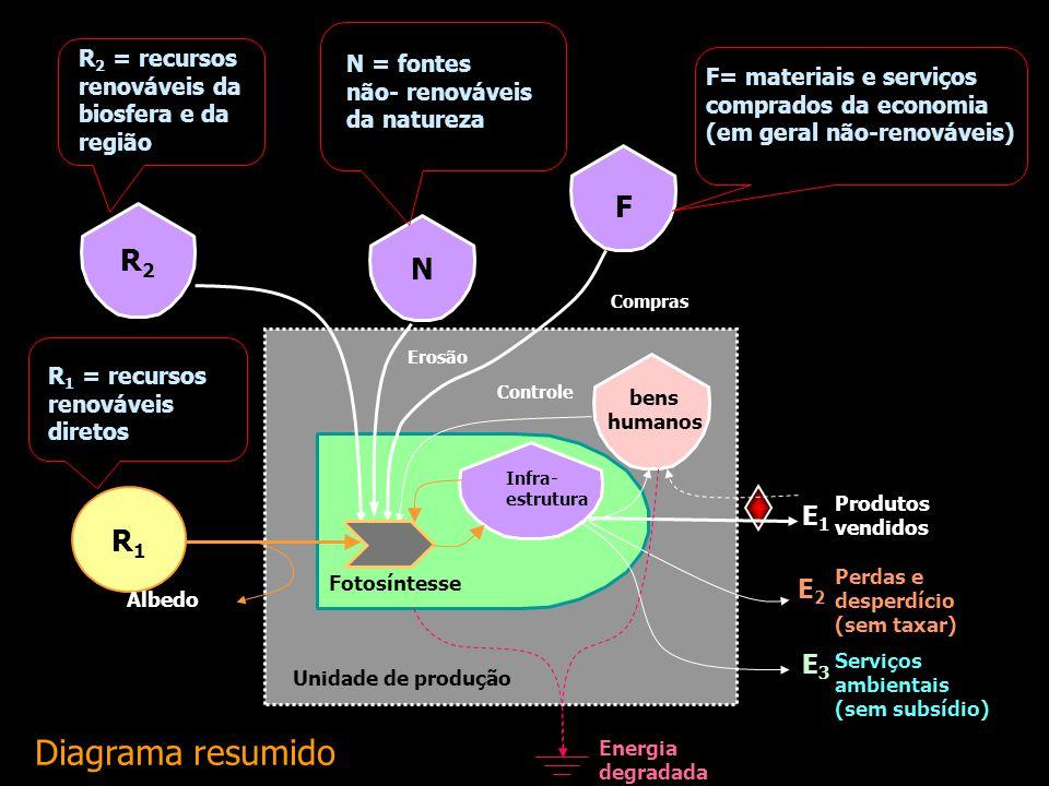 Emergia acumulada nos ecossistemas: solo, água, madeira, etc. EconomiaModerna Avaliação Emergética Procedimentos para uma avaliação emergética de um s