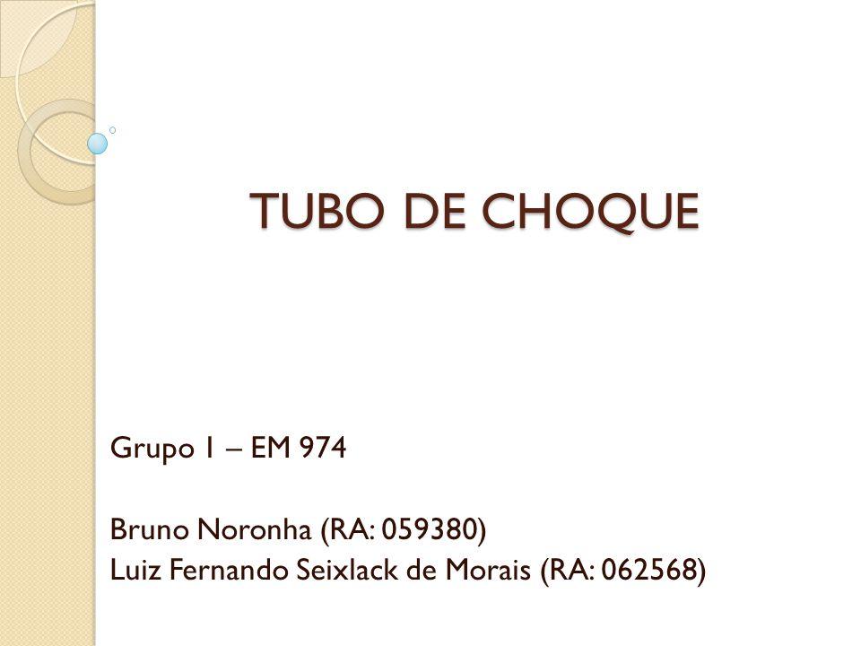 TUBO DE CHOQUE Grupo 1 – EM 974 Bruno Noronha (RA: 059380) Luiz Fernando Seixlack de Morais (RA: 062568)