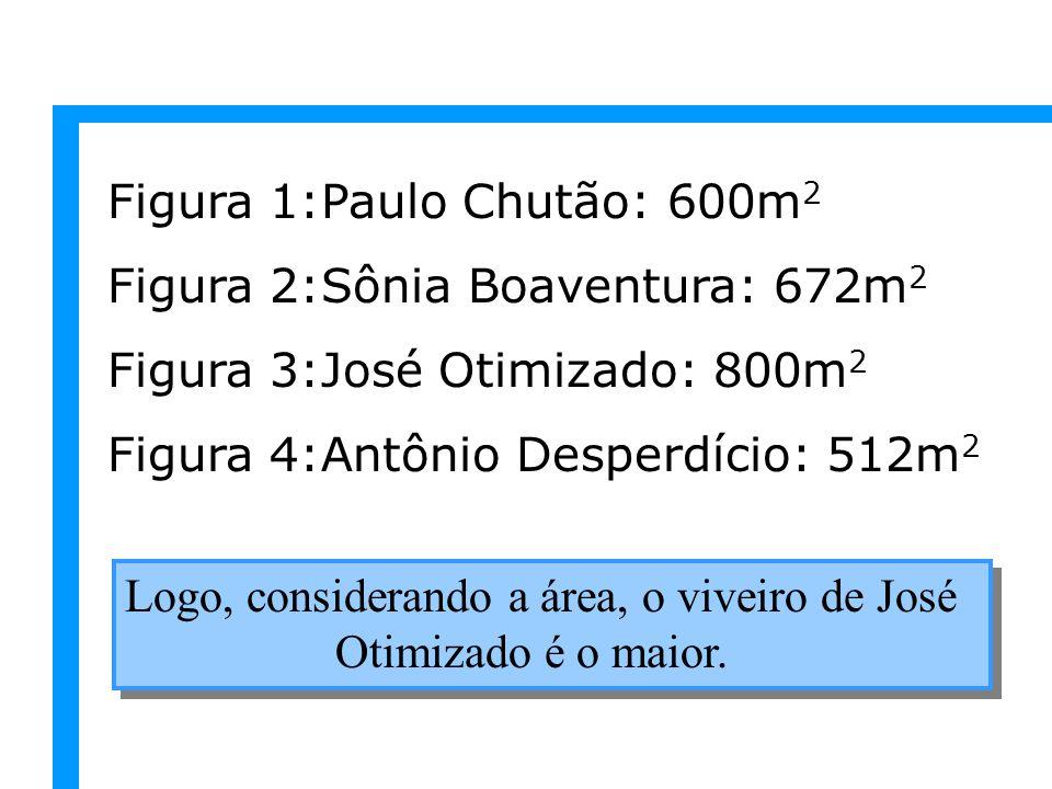 Figura 1:Paulo Chutão: 600m 2 Figura 2:Sônia Boaventura: 672m 2 Figura 3:José Otimizado: 800m 2 Figura 4:Antônio Desperdício: 512m 2 Logo, considerand